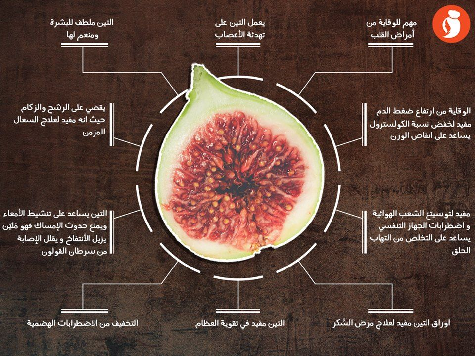اتعرفوا على فوايد التين الممذهلة Fruit Food Cantaloupe