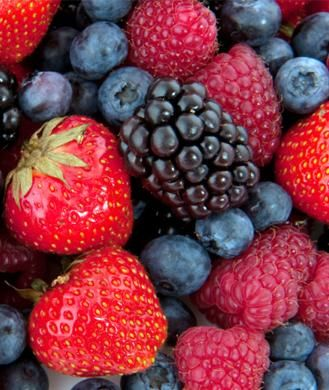 I love fruit!