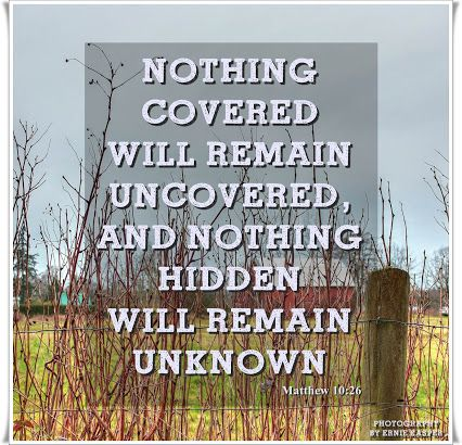 Image result for nothing imperfect shall enter heaven bible
