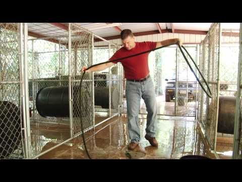 ▷ building a dog kennel - youtube | kennel design & business ideas