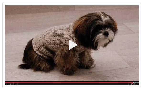 Au tricot diy tricoter un manteau pour chien … | Manteau