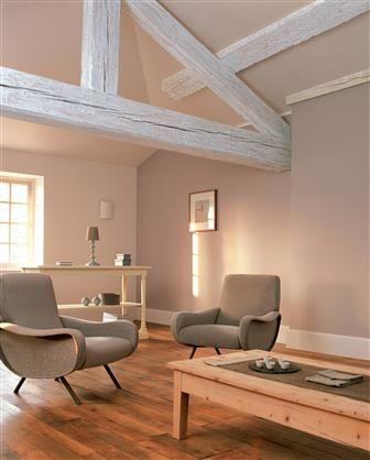 Un Salon Brun Couleur Mur Salon Deco Salon Deco Maison