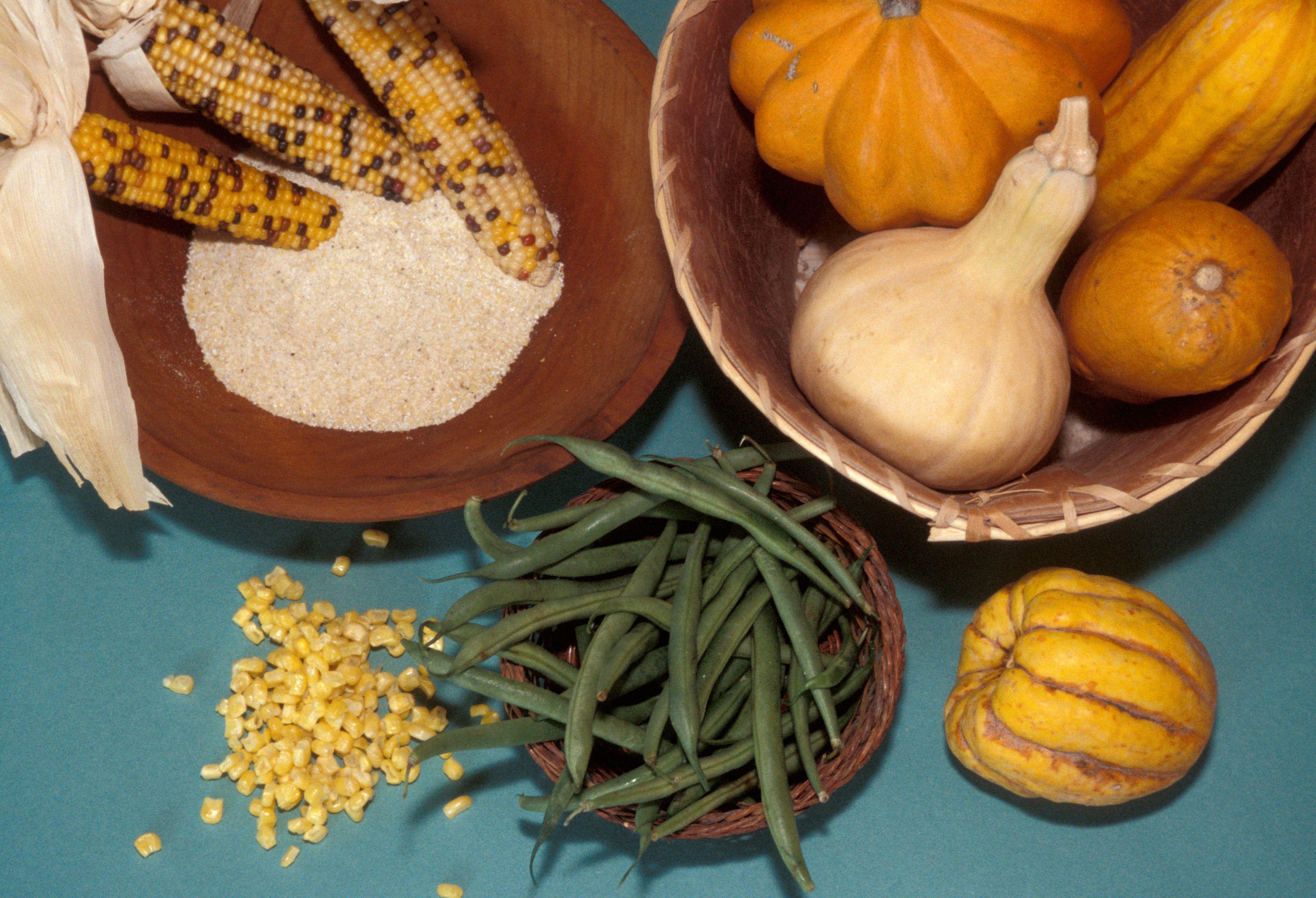 Wampanoag Indians Food