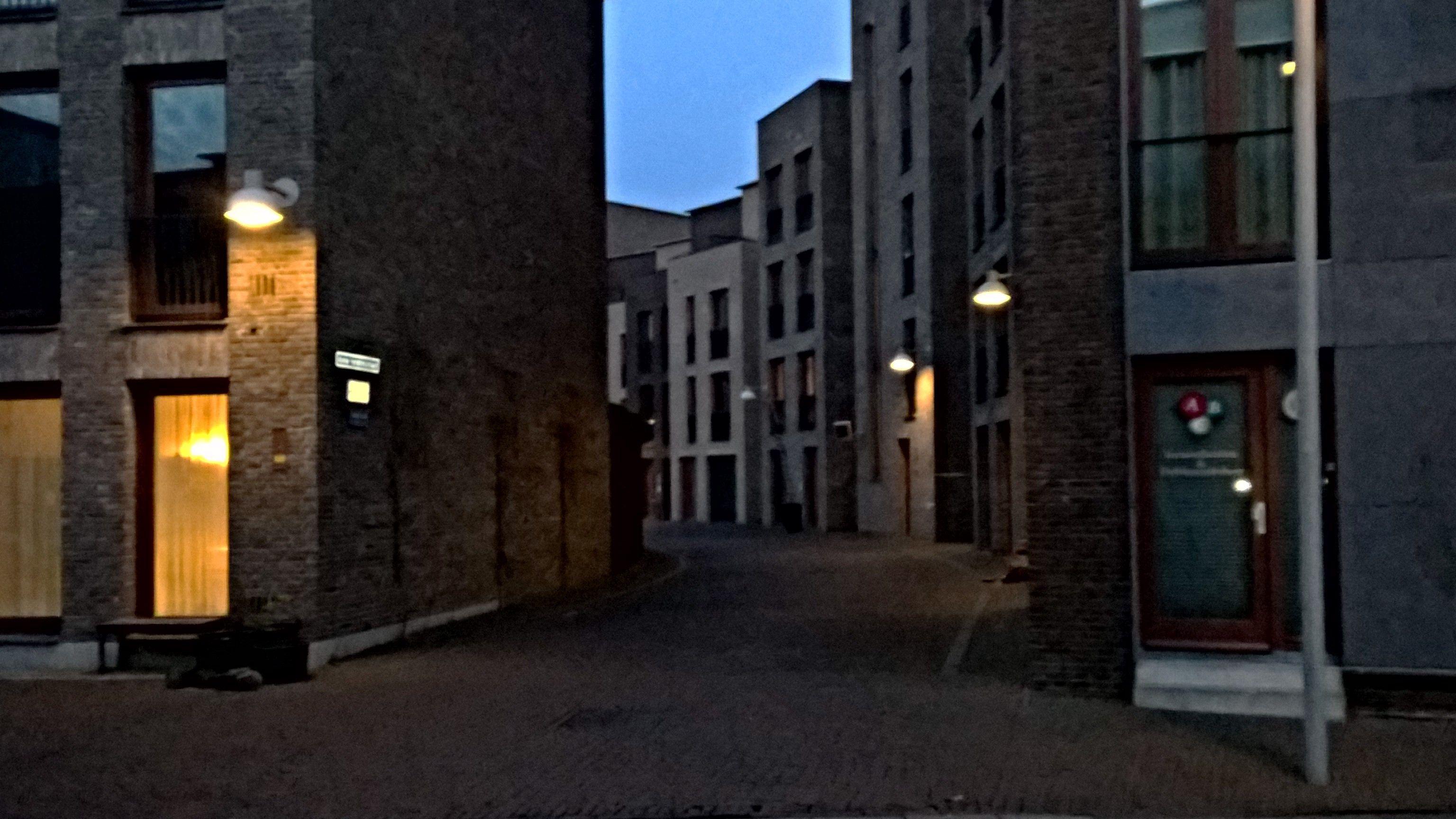 Leeuwenveld