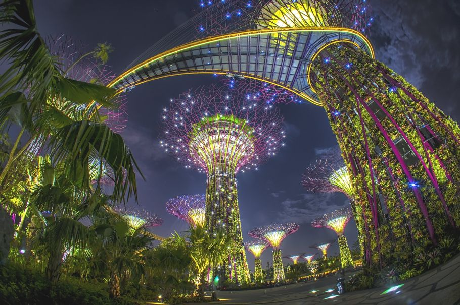 Singapore's Gardens By the Bay is a must see for the environmentally conscious. The nature reserve won building of the year at the World Architecture Festival.