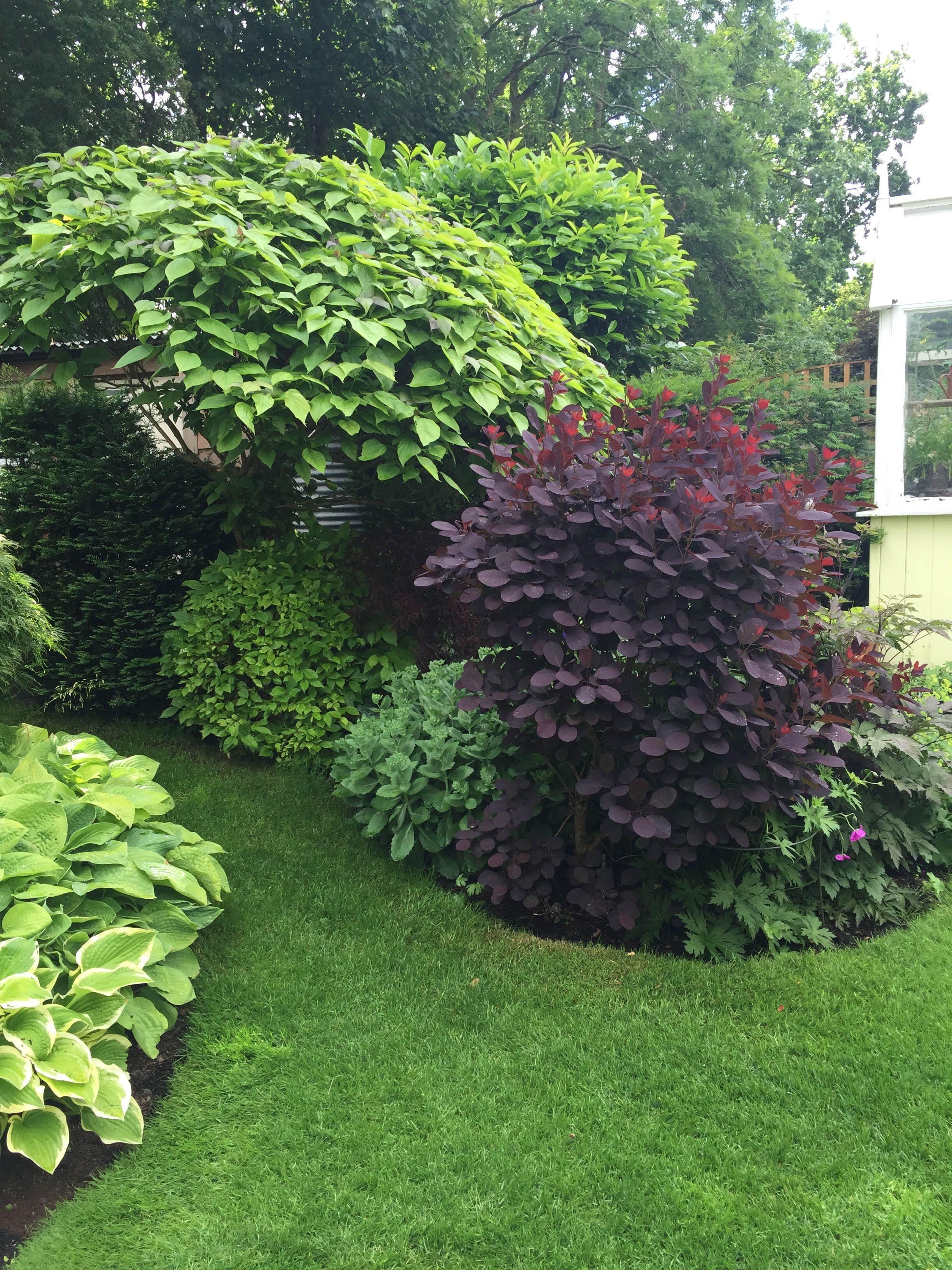 Garden Design Cheshire Caroline Benedict Smith In 2020 Garten Landschaftsbau Garten Bepflanzung