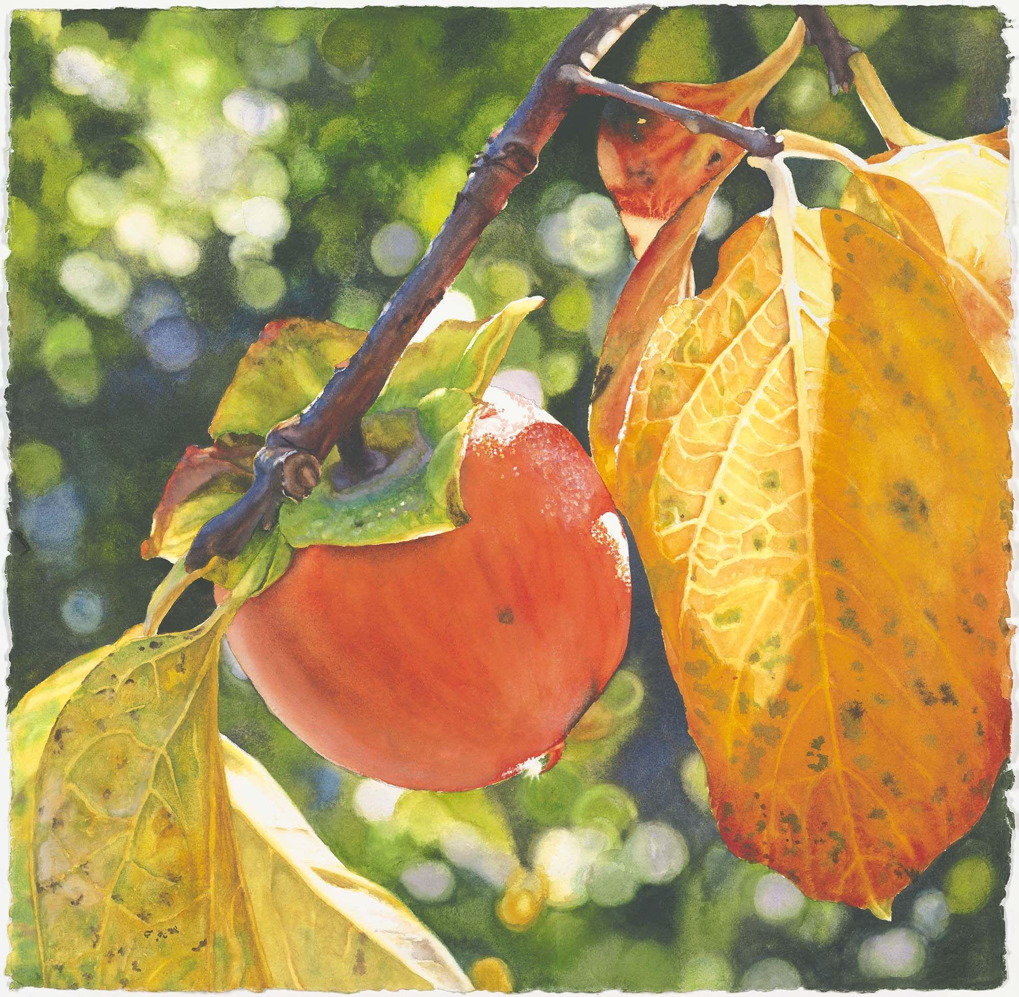 Color art floral wonders - Life In Full Color Cara Brown Www Lifeinfullcolor Com