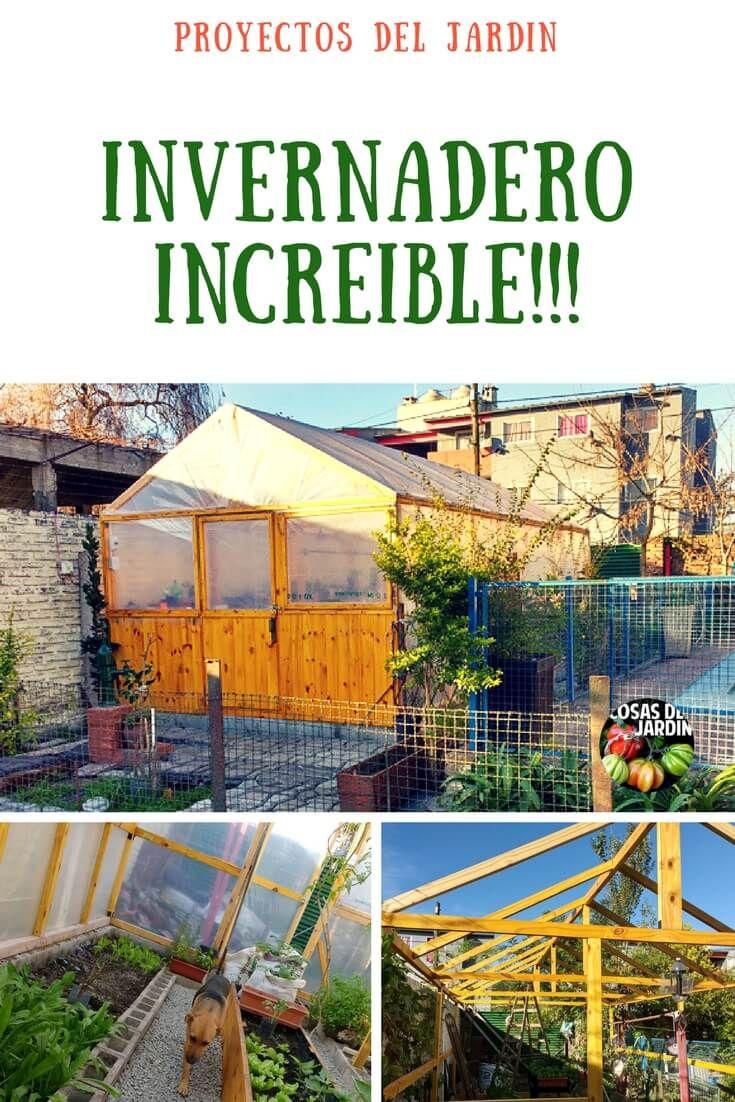 Este es el mejor invernadero que vi en mi vida for Construccion de un vivero paso a paso