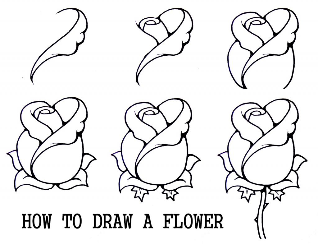 Ideas Of Draw For Beginners Step By Step , Drawing Art