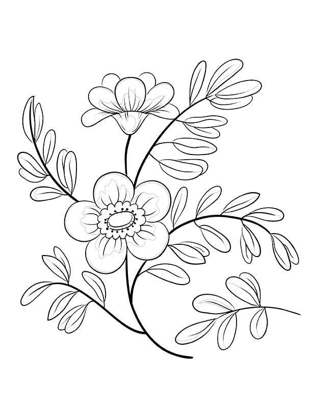 Senior_CB_0001_Page-1-800x800.jpg (618×800)