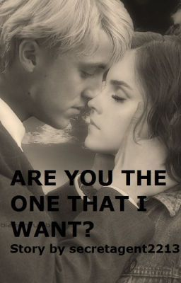 Are You The One That I Want? (Dramione Love Story) - Chapter