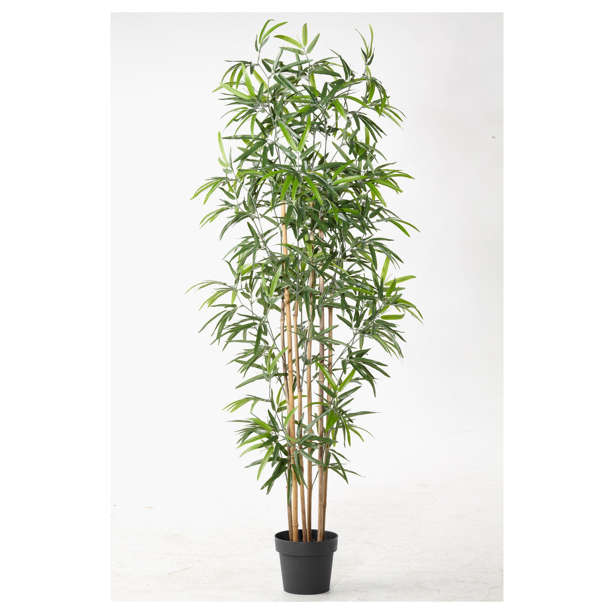 Fejka planta artificial em vaso bambu decora o de - Bambu in vaso acqua ...