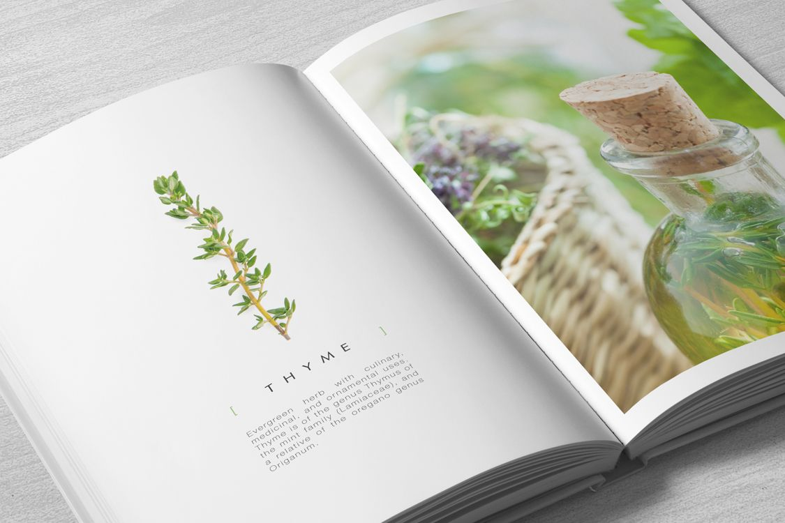 Concept and Design for a Herbals Book who lists all kinds of Plants by Color and their Properties. A complete Manual with gardening, medical and cooking info.
