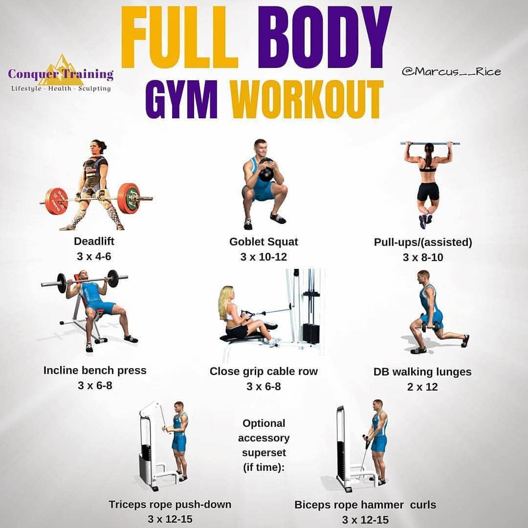 Full body gym workout exercises your body workout