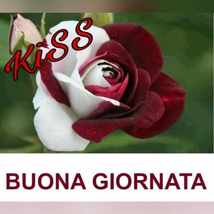 Populaire http://ift.tt/2v6l6Uu Frasi di buongiorno sms di buongiorno  WH74