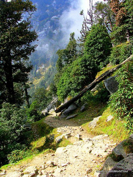 Triund trail