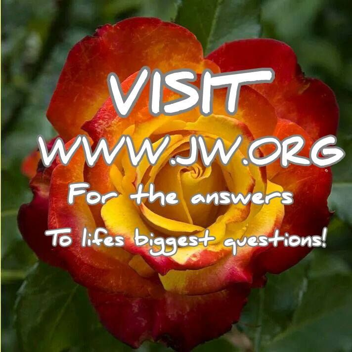 JW.ORG Over One Million Visits A Day!