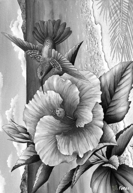 Een projectjes voor     kleurvitalityblogspotbe Kleuren - copy free coloring pages of hibiscus flowers