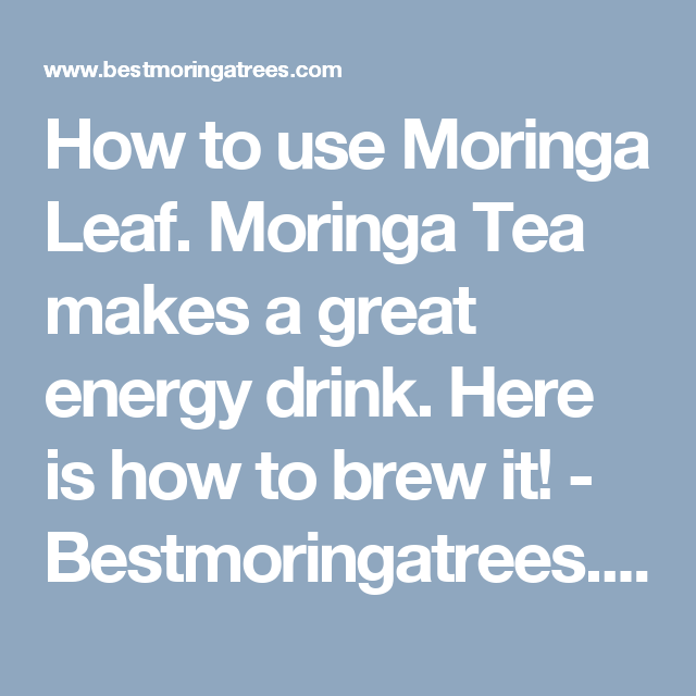 How to use Moringa Leaf. Moringa Tea makes a great energy drink. Here is how to brew it! - Bestmoringatrees.comOrder the finest PKM1 moringa seed here!