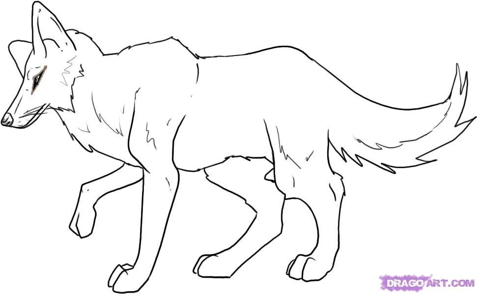 How To Draw A Coyote By Dawn With Images Animal Coloring Pages