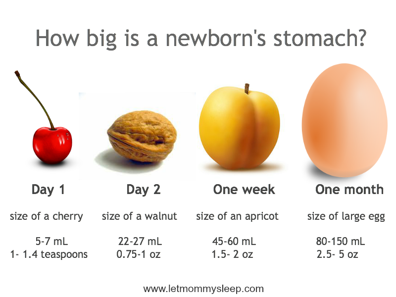 newborn tummy size - Siteze