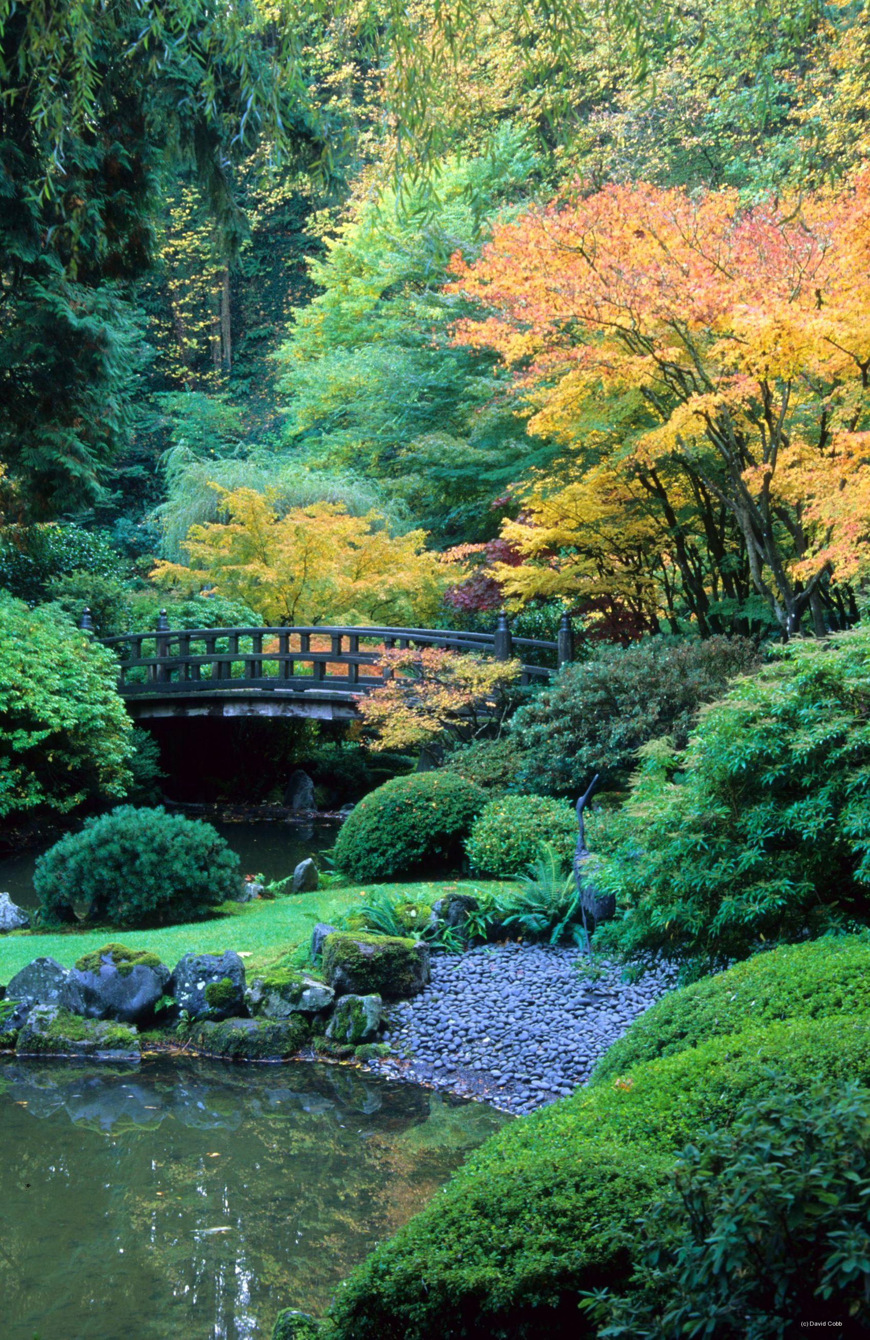Strolling Garden At Portland Japanese Garden, Oregon-Photo