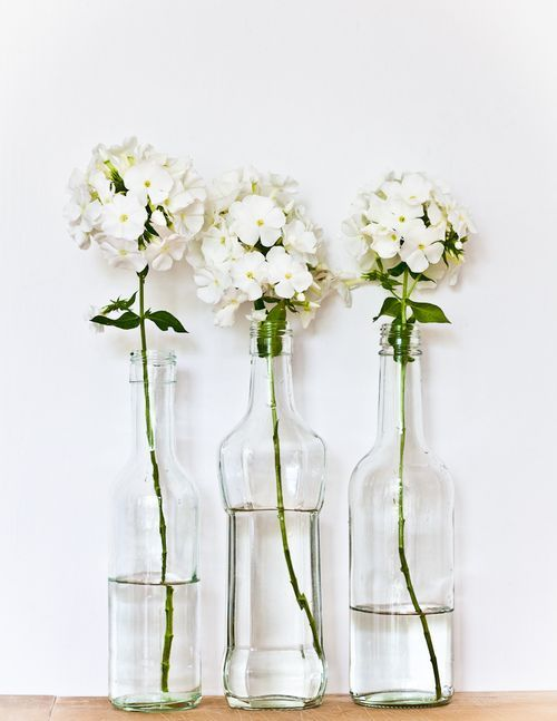 Fiori Bianchi In Vaso.Great Way To Reuse Glass Bottles For A Cute Display