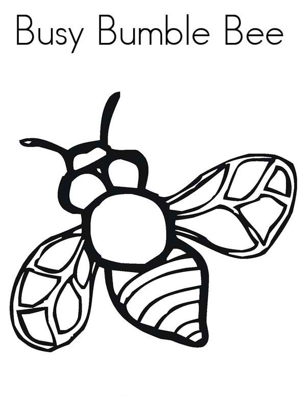 Busy Bumble Bee In Species Of Bugs Coloring Page Coloring Sun Bug Coloring Pages Bee Coloring Pages Cute Coloring Pages