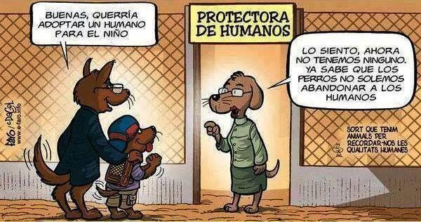 Protectora de humanos ... ... ... #CyberLibrary #SocialMedia #Biblioteca #Bibliotecas #Linkedin #Privacy #Policy #Library #Libraries #book #books #livros #livres #biblio