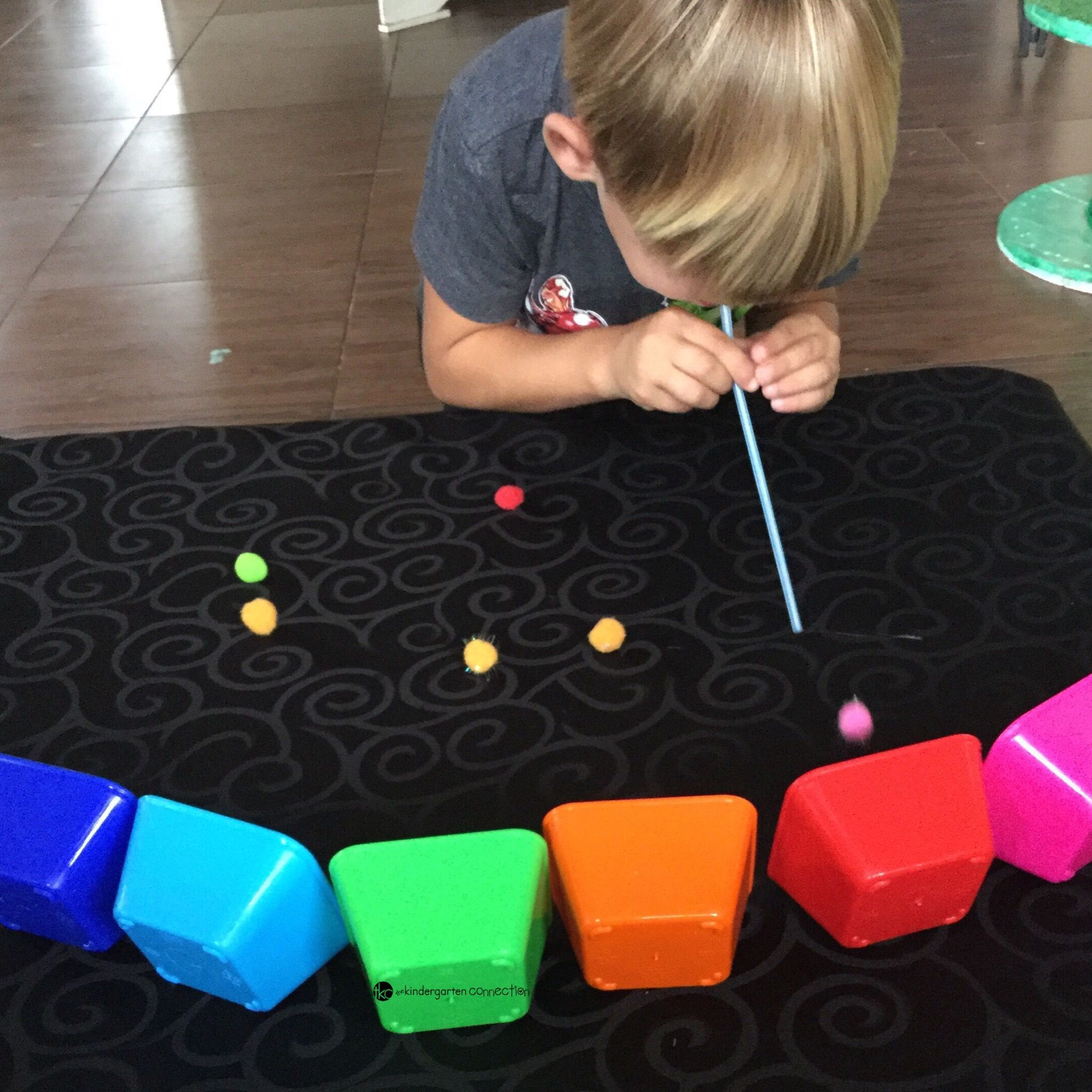 Rainbow Pompom Race Color Recognition Activity