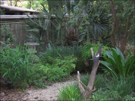 Bird Garden Design by Jody Walthall of Native Nurseries in ...