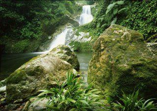 40 Pico Bonito National Park Ideas Bonito National Parks Honduras