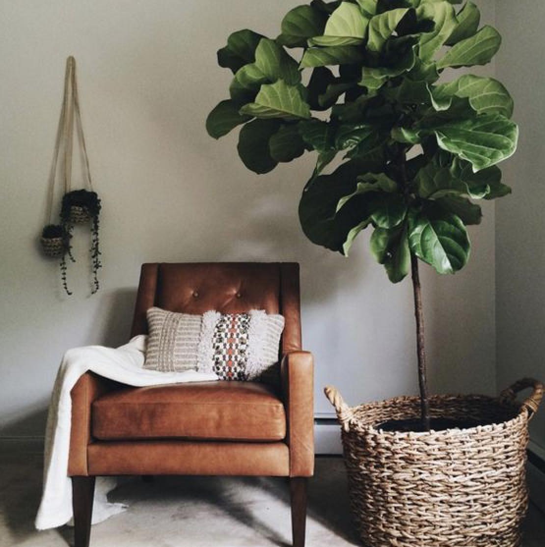 Pin von Hailey Wilking auf Dream home | Pinterest