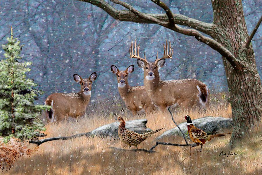 Pictures Of Deer To Print Deer Hunting Art First Snow Fine Art Deer Print Deer Artist Dale Wildlife Paintings Deer Art Hunting Art