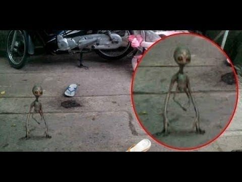UFOs Cover-Up 2015: Most SHOCKING ExtraTerrestrial Documentary - New BBC Alien Sightings HD - YouTube