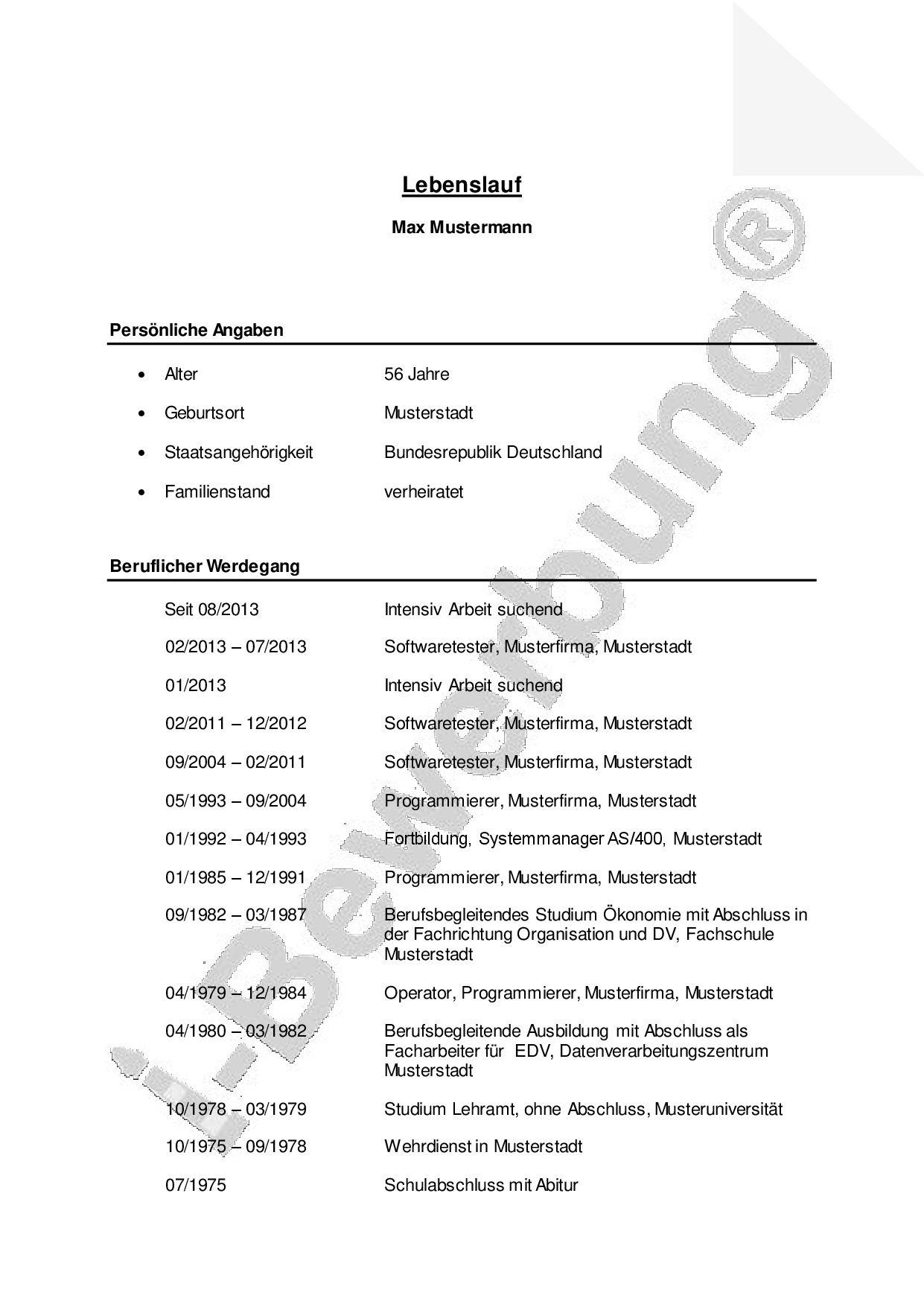 Fein Lebenslauf Vorlage Mehrere Berufsbezeichnungen Ideen - Entry ...