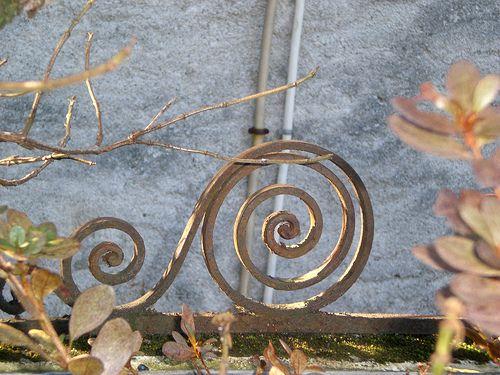 Ricciolo in ferro battuto, foto by Vera