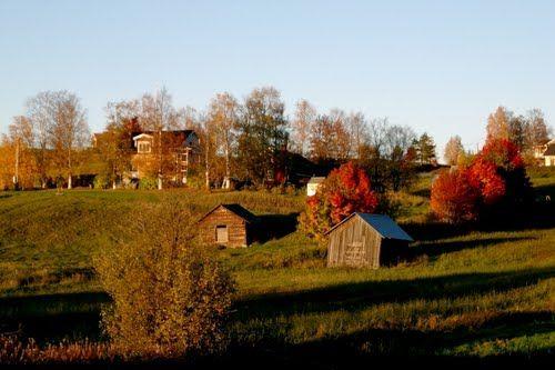 Schorl from Offerdal, Krokom, Jämtland County, Sweden