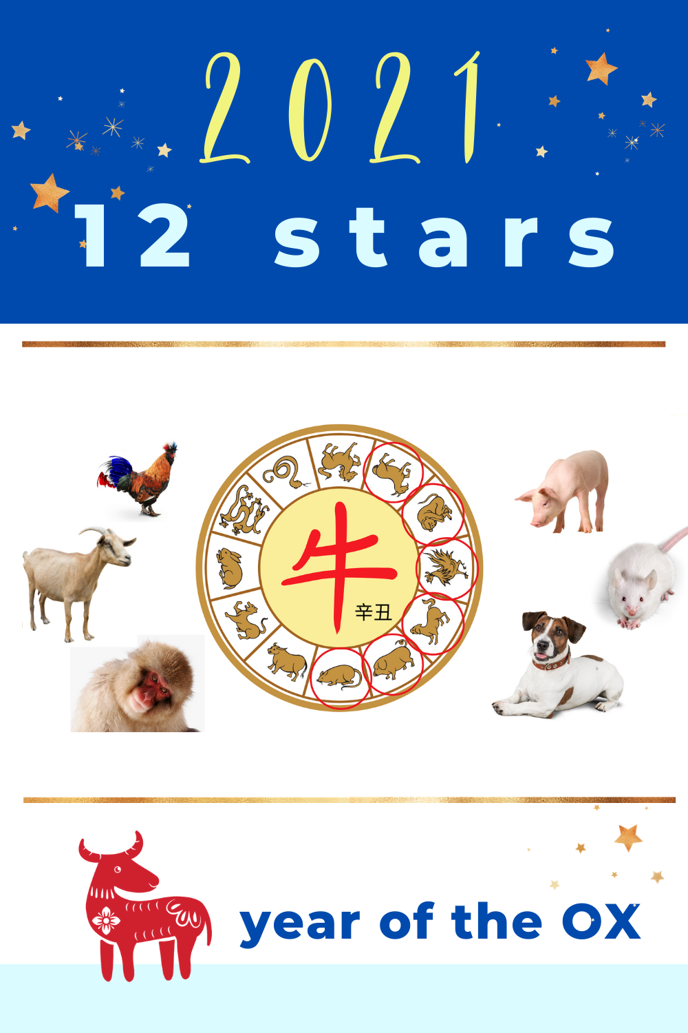 2021 Ox Year Zodiac Sign Part 2 Forecast 2021 Ox Year Pet Signs Chinese Zodiac Signs