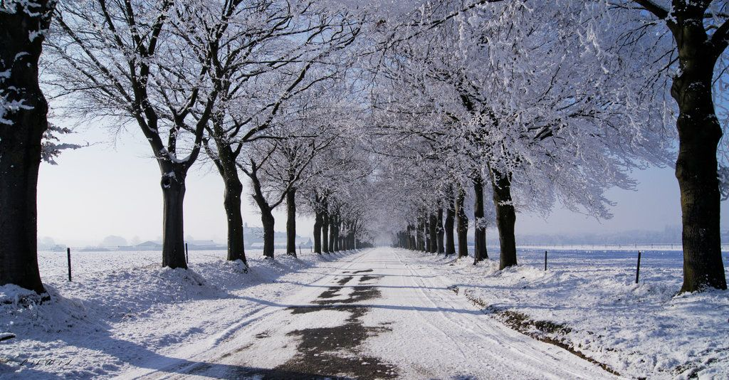 Endless Road by LikWid82.deviantart.com