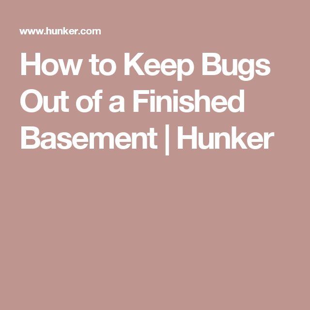 How to Keep Bugs Out of a Finished Basement Pantry Bugs Ticks