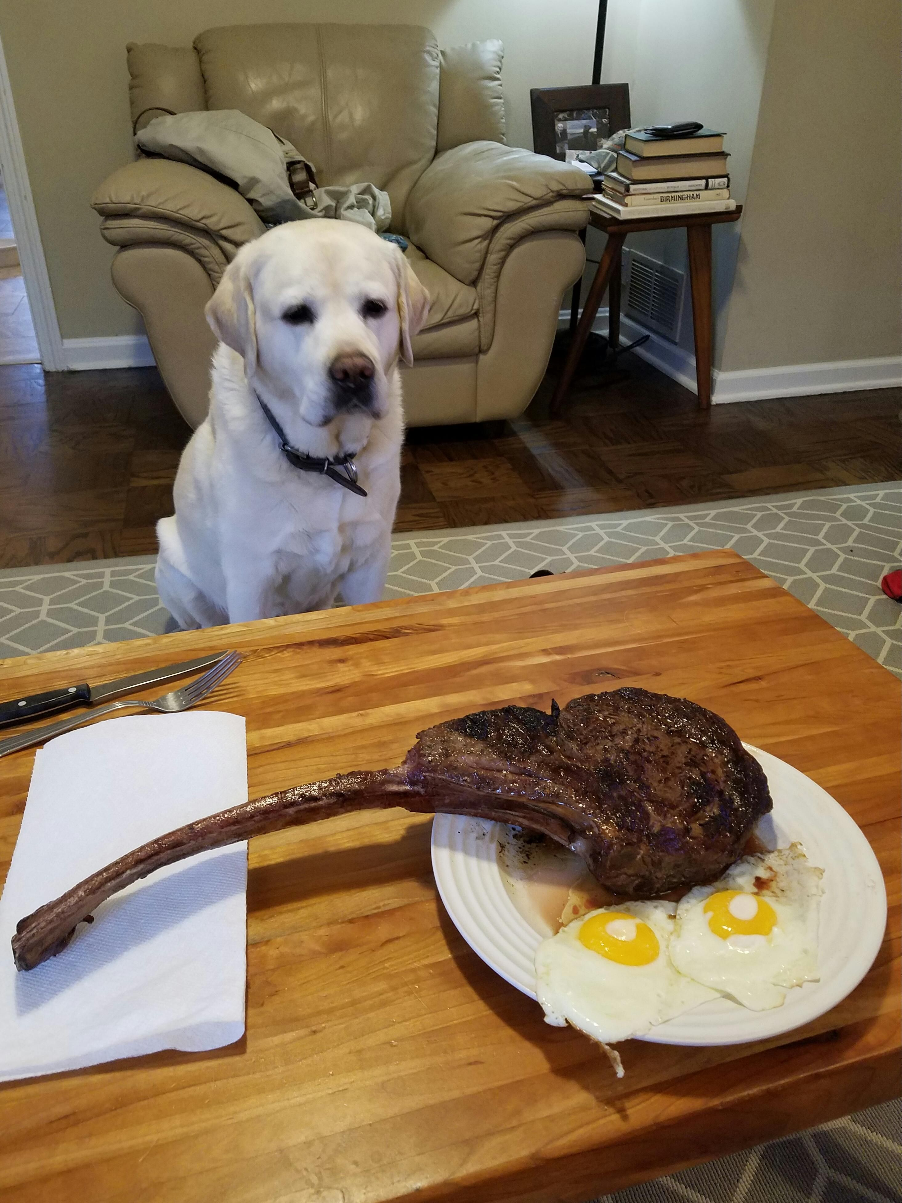 [Homemade] Steak and eggs http//ift.tt/2mUU4t1 Funny