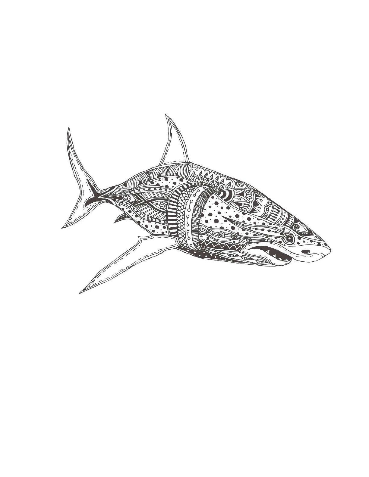Great White Shark Coloring Page For Adults Shark Coloring Shark Coloring Pages Beach Coloring Pages Coloring Pages
