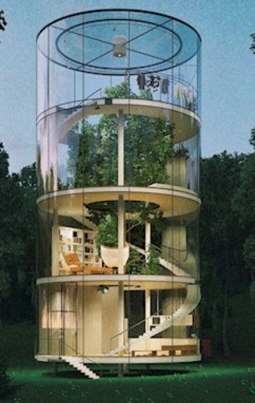 House With Tree Inside Architecture Design Architecture