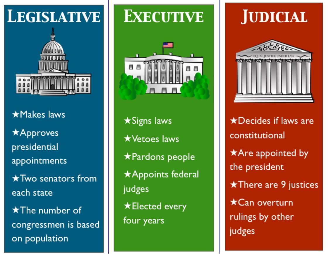 Image Result For Branches Of Government