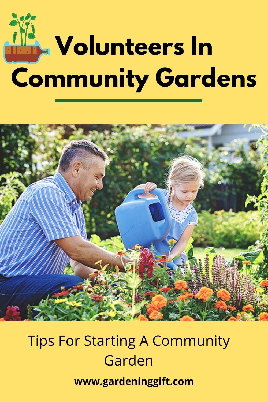Volunteers In Community Gardens Tips For Starting A Community Garden Volunteer Programs Community Gardening Volunteer
