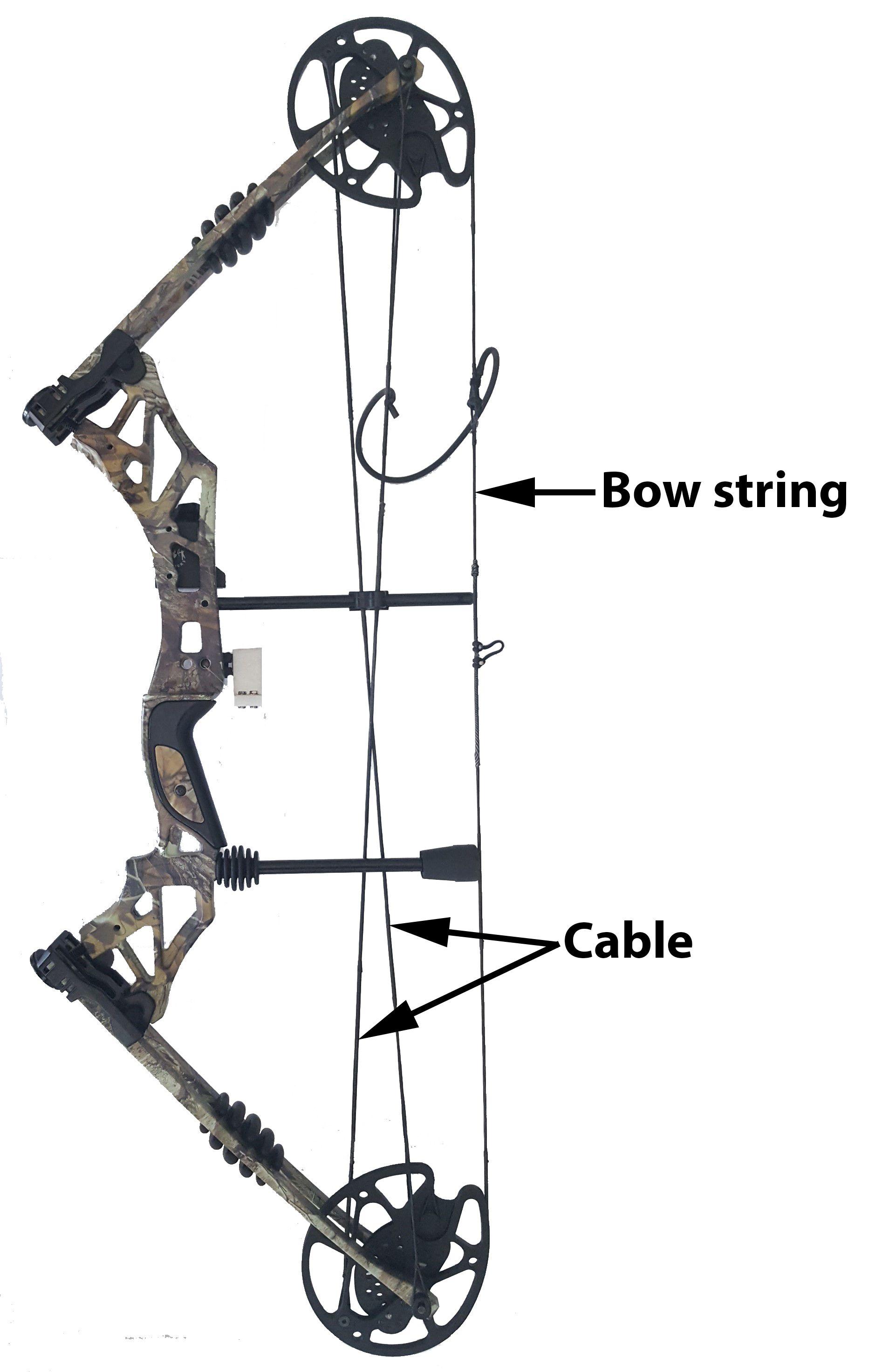 Pin On Compound Archery