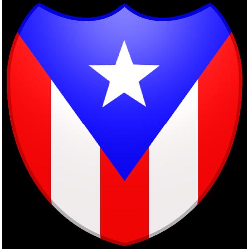 Shield Pr Flag Pr Flag Digital Artist Puerto Rican Flag