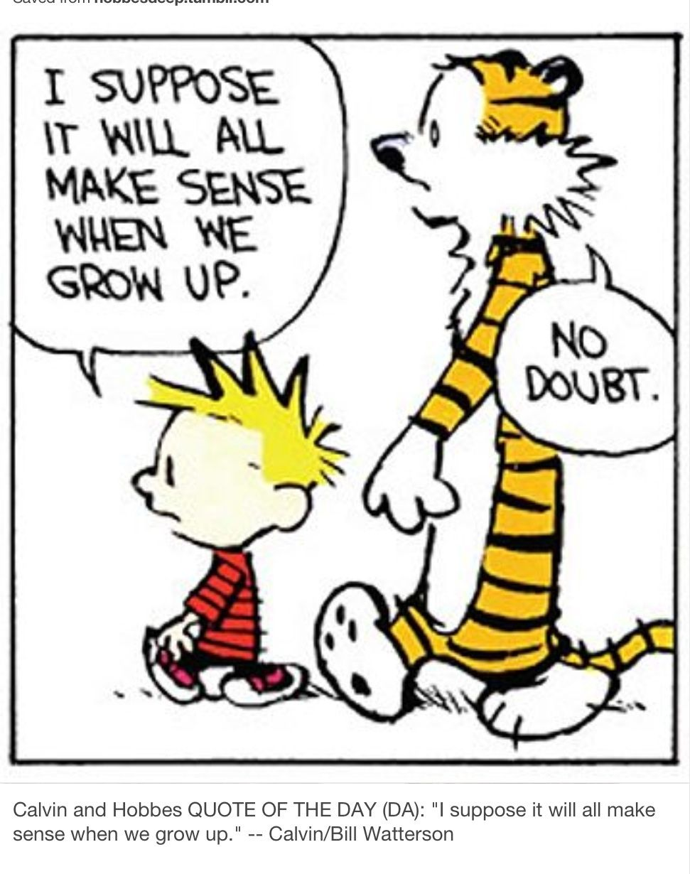 Went To High School With This Cartoonist Calvin And Hobbes Quotes Calvin And Hobbes Comics Funny Cartoons For Kids