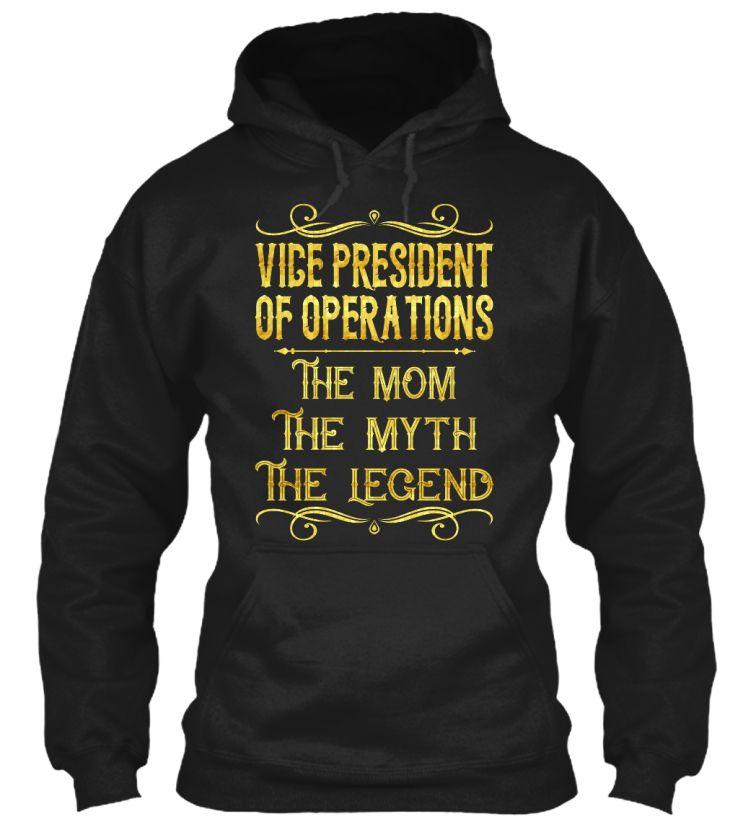 Vice President Of Operations Vicepresidentofoperations  Job